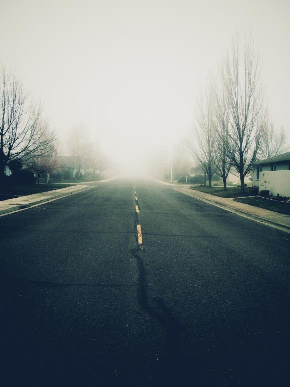 Ryan_Fog Noir 3
